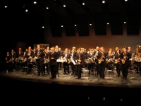 Concours Maaseik 2008